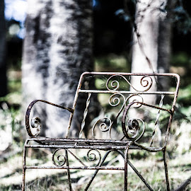 The Chair by Ricky Pfeiffer - Artistic Objects Furniture ( chair, iron chair, scrolls, artistic chair, old chair, Chair, Chairs, Sitting )