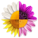 Step Flowers Pro icon