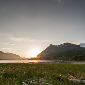 Sunset in Sørfjord by Benny Høynes - Landscapes Sunsets & Sunrises ( grass, sunset, sea, summer, norway, fjord )