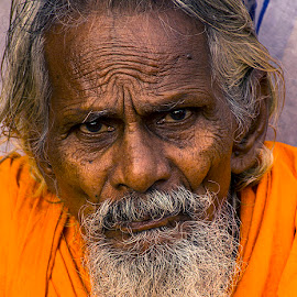 Golden Age by Rakesh Syal - People Portraits of Men