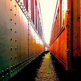 by Kelly Kochis - Transportation Trains (  )