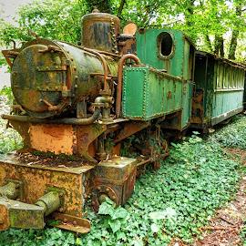 Litlle old train.. Ćiro. by Željko Salai - Transportation Trains