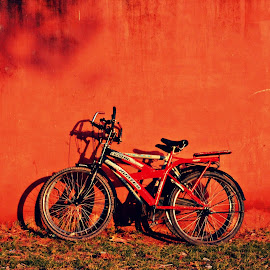 Red Wall - Red Cycle  by Subal Soral - Novices Only Objects & Still Life (  )