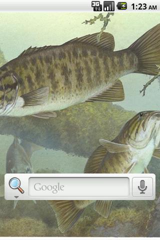 Bass Pro Live Wallpaper