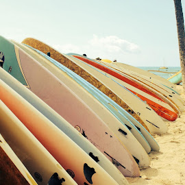 Surf by Ewelina Frye - Sports & Fitness Surfing