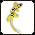 Gecko doo-dad yell/purple icon