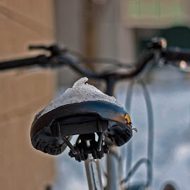 Ice snowy seat bicycle! by Réjean Côté - Transportation Bicycles ( winter, seat, ice, snow, bicycle )