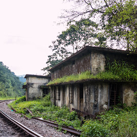 By the Tracks by Sukla Chinnappa - Buildings & Architecture Decaying & Abandoned ( old, railway, track, train, abandoned,  )