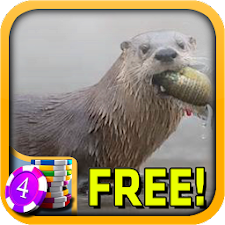 River Otter Slots - Free