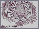 Thumbnail of the map 'Teh Bengal Tiger'