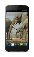Screenshot of Elephant Free Video Wallpaper
