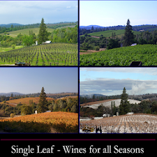 Single Leaf Vineyards & Winery