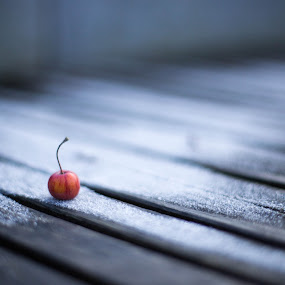 by Manuel Herrmann - Food & Drink Fruits & Vegetables ( cherry )