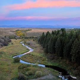 by Shelly Hendricks - Landscapes Prairies, Meadows & Fields