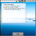 Todo Manager with a widget