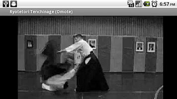 Screenshot of Aikido Fifth Kyu (Donate)