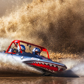 Jetboat racing by Sue Niven - Sports & Fitness Watersports ( water, jet boat racing\, shark, boat, race )