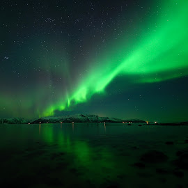 Aurora reflection by Marius Birkeland - Landscapes Waterscapes ( reflection, sky, aurora borealis, aurora, reflections )
