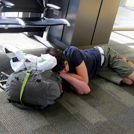 The Traveler by Jane Spencer - People Street & Candids ( austin, airport, texas, tired, traveler, sleep,  )