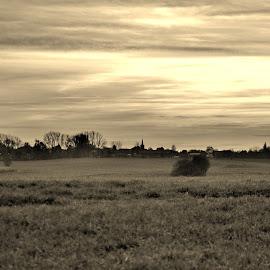 by Muriel Charton - Landscapes Prairies, Meadows & Fields