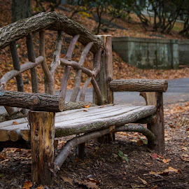 Wooden Bench by Jen Pezzotti - Artistic Objects Furniture ( park, wood, bench, fall, cemetery )