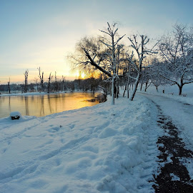 Sunrise in a Park from Bucharest, Romania by Magda Creosteanu - City,  Street & Park  City Parks ( icy, park, frozen lake, romania, lake, quiet, city park, frozen, bucharest, winter, cold, ice, snow, silence, trees, sunshine, sunrise, frosty )