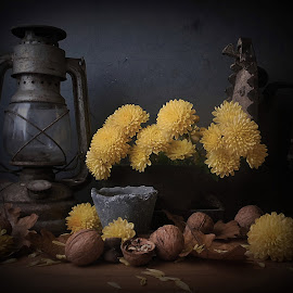 Des souvenirs by Maria Fekete - Artistic Objects Still Life