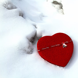 Love Winter by David Uthe - Abstract Fine Art ( winter, candy, snow, red, white, pwc87, love, postcard, valentine's day )
