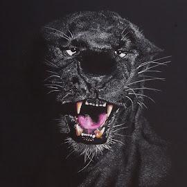 PANTERA by Kile Zabala - Painting All Painting ( watercolor, acuarela, pantera, felinos, paint, dibujo, animales, pintura, naturaleza )
