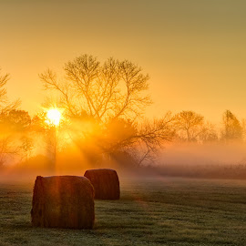 Catching the Rays by Jim Heidelberger - Landscapes Prairies, Meadows & Fields ( minnesota, fog,  )