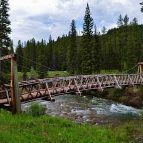 Gateway to the Bob Marshall Wilderness by Don Evjen - Buildings & Architecture Bridges & Suspended Structures ( forests, pines, mountains, montana, rapids, suspension, bridge, river )