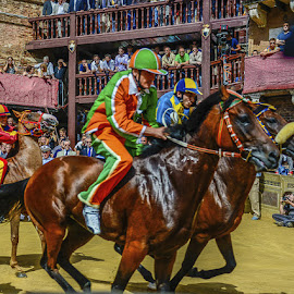Siena Palio by Michael Moss - Sports & Fitness Other Sports