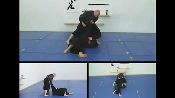 Screenshot of Ninjutsu Movements
