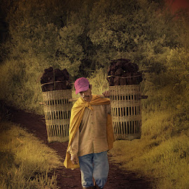 breadwinner by Didit Aryono - People Street & Candids