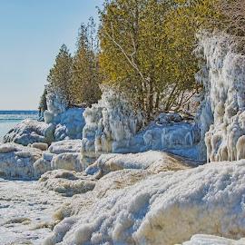 Wave Action by John Kehoe - Landscapes Weather ( shore, wind, lake michigan, tree, waves, ice, shoreline, lake, storm )