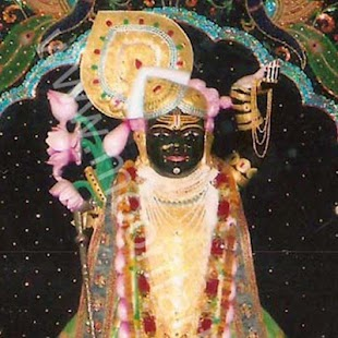 Shrinathji - screenshot