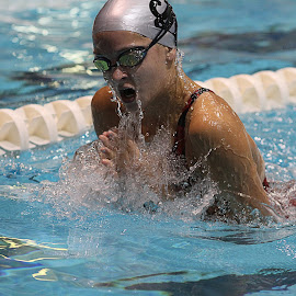 splash by Dale Wooten - Sports & Fitness Swimming ( water, athelete, girls, athletics, high school, pool, breast stroke, swimming )