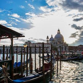 Venice by Filip Kvakic - City,  Street & Park  Street Scenes ( gondola, building, sky, venice, landscape, italy, channel )