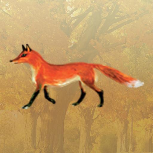 解謎App 教育的なゲーム LOGO-3C達人阿輝的APP