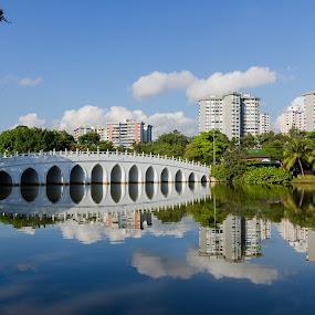 Chinese Garden by Lye Danny - City,  Street & Park  City Parks