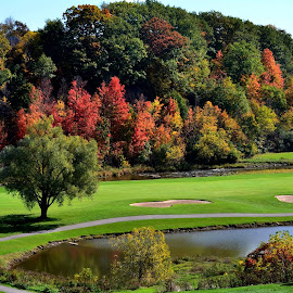 Glen Abbey in the Fall by Marc Loranger - Sports & Fitness Golf ( greens, fall colours, autumn, golf, landscape )