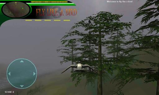 Fly like a bird 3 - screenshot