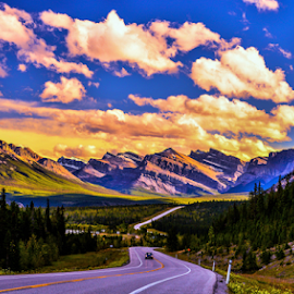 Going To The Rocky by Joseph Law - Landscapes Travel ( clouds, |going to, national park, blue sky, bushes, sunny, shine upon the rocky, trees, banff, roads, the rocky mountains )