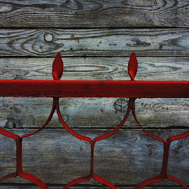 Fence by Vukosava Radenovic - City,  Street & Park  Neighborhoods