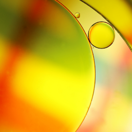 Trapped by Dipali S - Abstract Macro ( water, abstract, surface, ellipse, blister, bubbles, image, yellow, circle, oil, macro, liquid, pattern, fluid, color, droplet, background, drops, wet, transparent, small, objects, closeup )