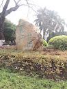 丽江花园石头
