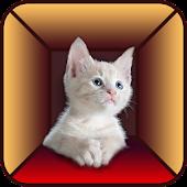 Free Download Cat Simulator APK for Samsung