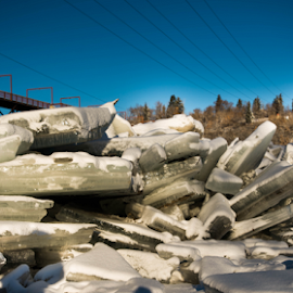 Ice Blocks by Joseph Law - News & Events Disasters ( created flooding, crach against, ice blocks, saskatchewan river in alberta, bridge poles, trees, bridge )