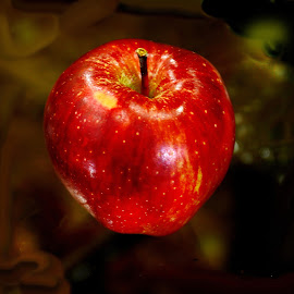 The Apple  by Azher Saleh - Food & Drink Fruits & Vegetables ( fruits )