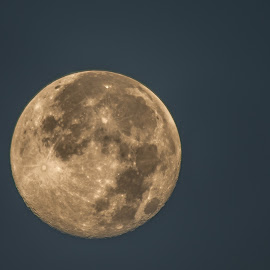 July 13 Super Moon by Robert Marquis - News & Events Science ( tx, 2014, super moon, july, lometa )